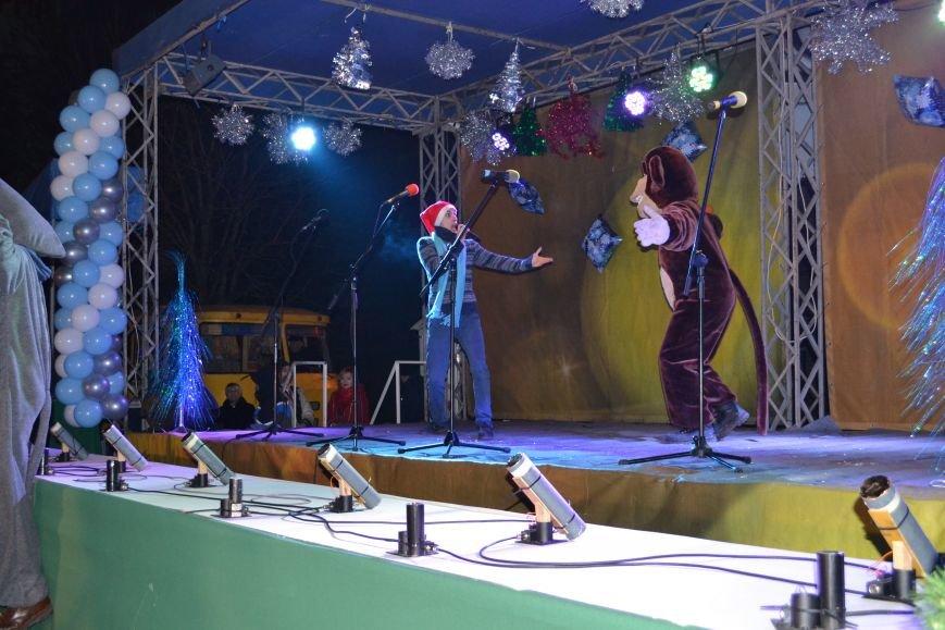 В Днепродзержинске открыли центральную новогоднюю ёлку, фото-7