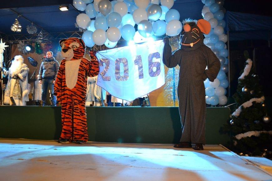 В Днепродзержинске открыли центральную новогоднюю ёлку, фото-25