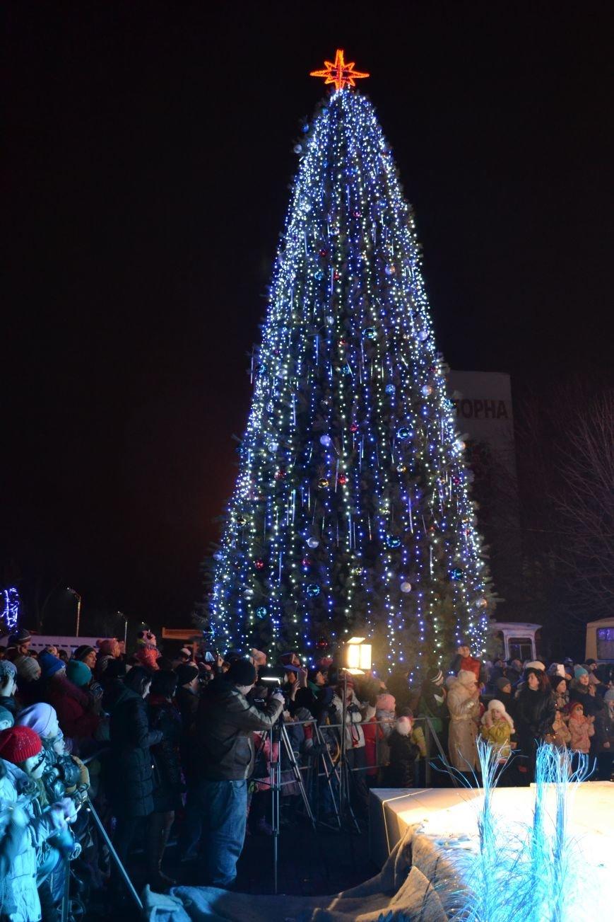 В Днепродзержинске открыли центральную новогоднюю ёлку, фото-28