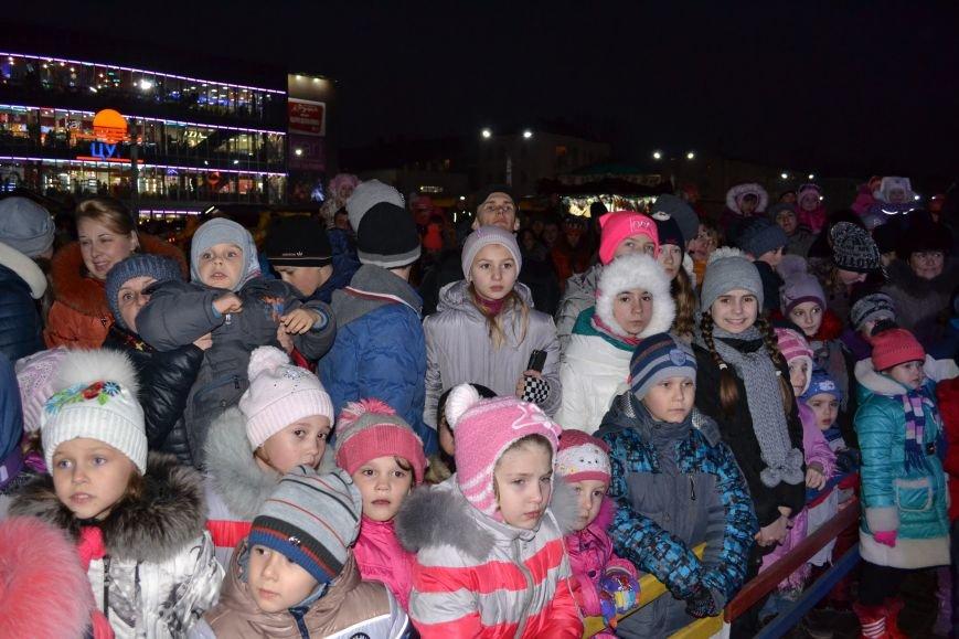 В Днепродзержинске открыли центральную новогоднюю ёлку, фото-17