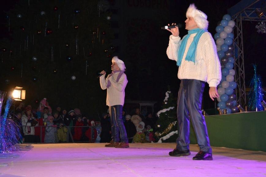 В Днепродзержинске открыли центральную новогоднюю ёлку, фото-19