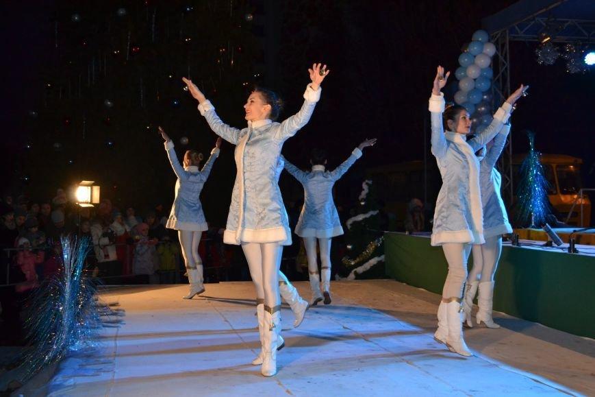 В Днепродзержинске открыли центральную новогоднюю ёлку, фото-11