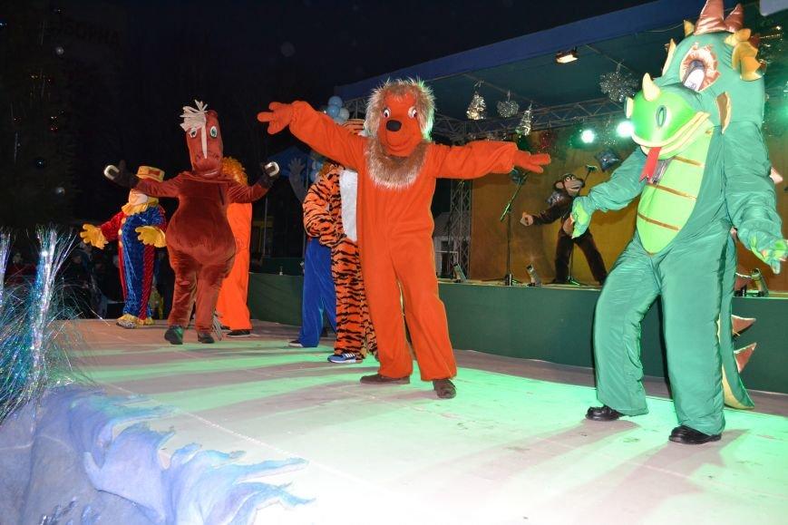 В Днепродзержинске открыли центральную новогоднюю ёлку, фото-6