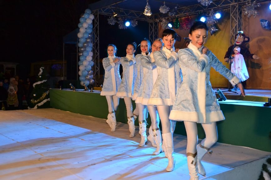 В Днепродзержинске открыли центральную новогоднюю ёлку, фото-14