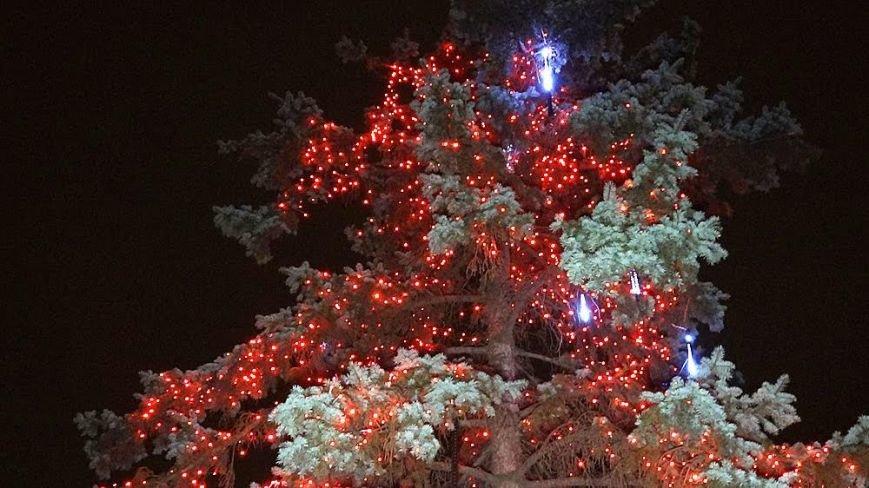 В Мариуполе комбинат им. Ильича сияет новогодней иллюминацией (ФОТО), фото-6