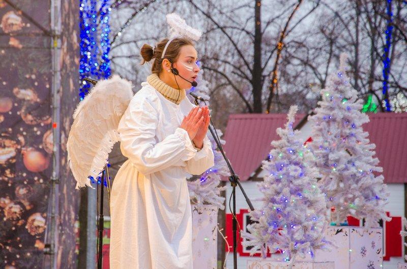 На Днепропетровщине открылся сказочный новогодний городок (ФОТО) (фото) - фото 8
