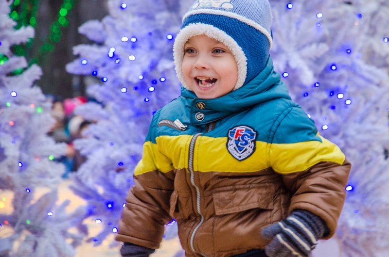 На Днепропетровщине открылся сказочный новогодний городок (ФОТО) (фото) - фото 3