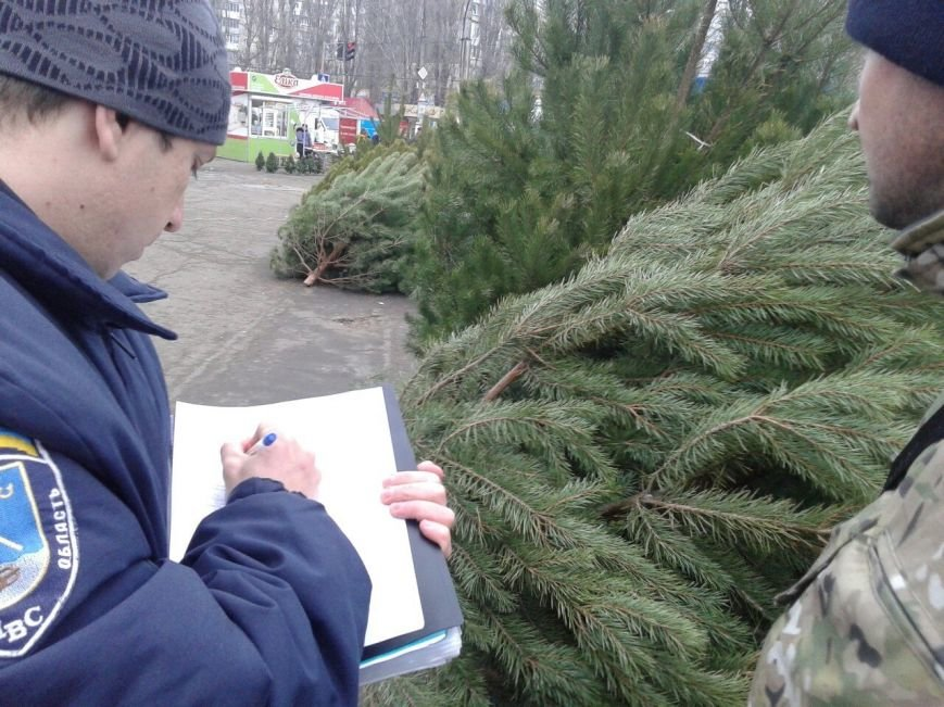 В Николаеве пресекли продажу браконьерских новогодних красавиц (ФОТО) (фото) - фото 1