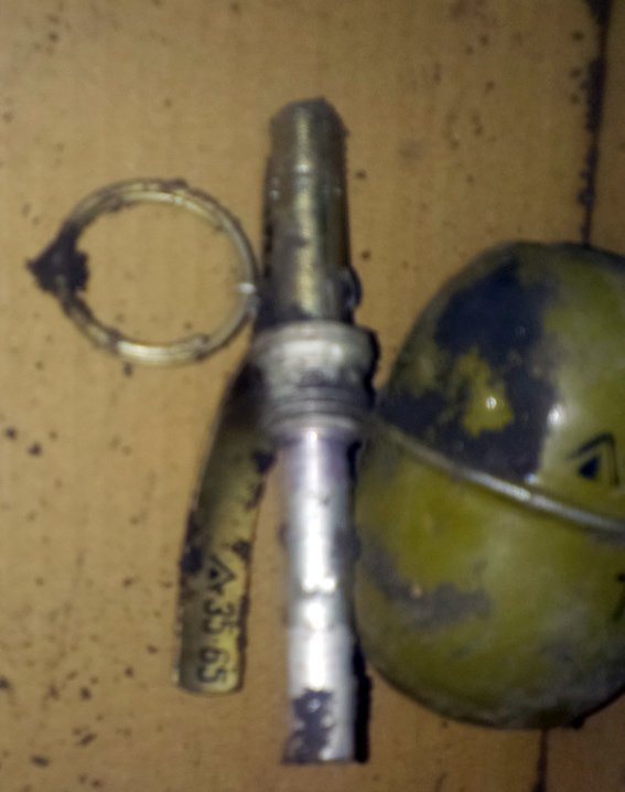 Полицейские Димитрова обнаружили гранату, спрятанную недалеко от кладбища (фото) - фото 1