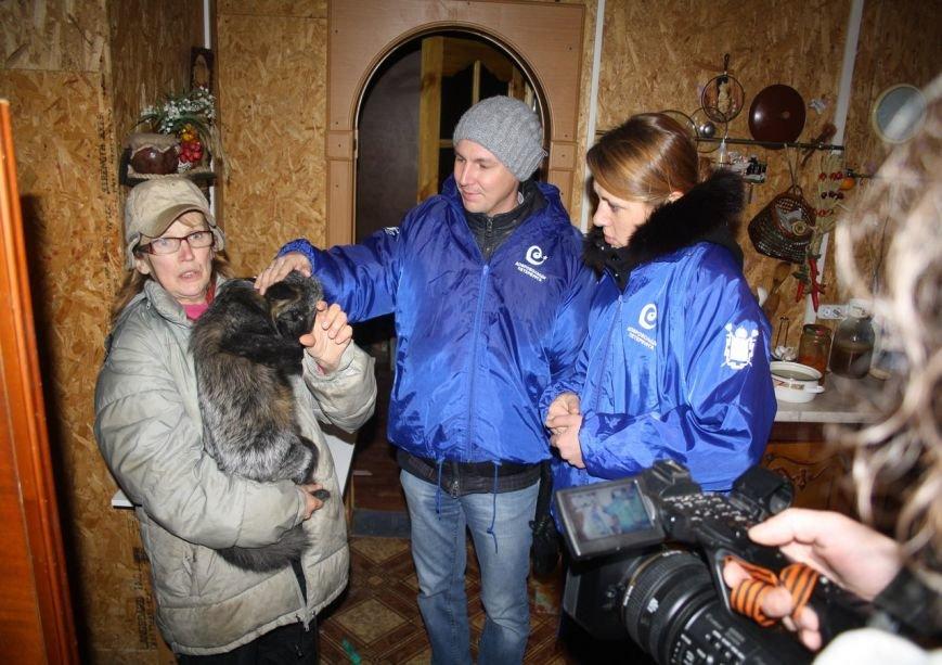 Волонтеры из Пушкина подружились с бездомными лисятами, фото-7