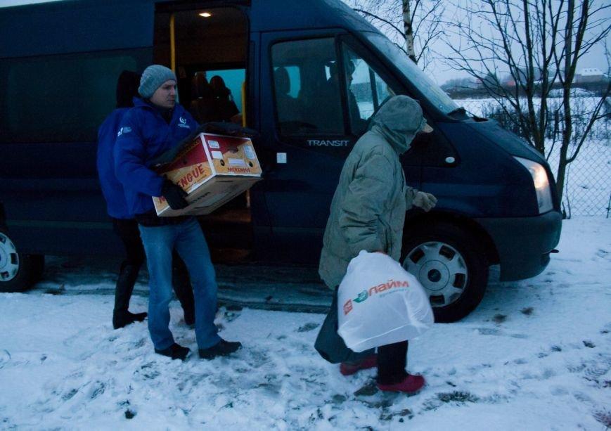 Волонтеры из Пушкина подружились с бездомными лисятами (фото) - фото 1