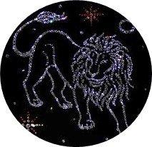 Правда и ложь гороскопа 2015 года: верят ли новополочане в предсказания астрологов (фото) - фото 2