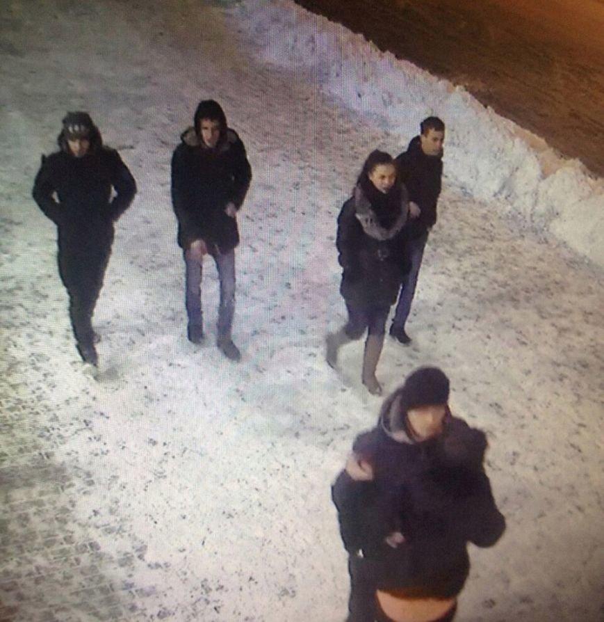 Надругавшиеся над оленями ульяновцев засветились на видеонаблюдении, фото-1