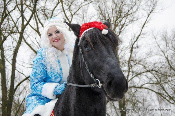Почему Дед Мороз не приезжает на оленях? Ждут ли новополочане Деда Мороза и Снегурочку? (фото) - фото 5