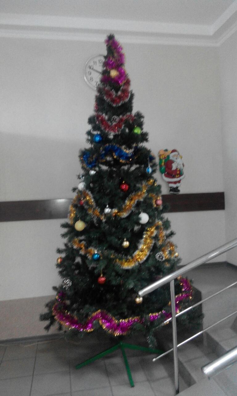 В Краматорском исполкоме нарядили елку (фото) - фото 1
