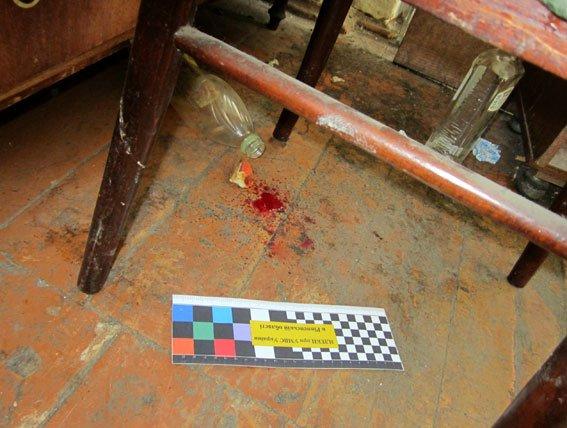 Злочин і кара - за вбивство співмешканця жінка відсидить вісім років (фото) - фото 1