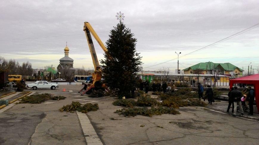 На левобережье Днепродзержинска собирают районную новогоднюю елку, фото-1