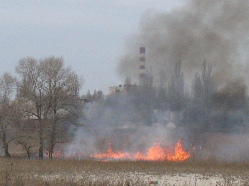 Сегодня на Раковке горела сухая трава на открытой территории (ФОТО) (фото) - фото 1