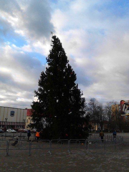 Главную елку Полоцка, упавшую из-за ветра, поставили на место (фото) - фото 2
