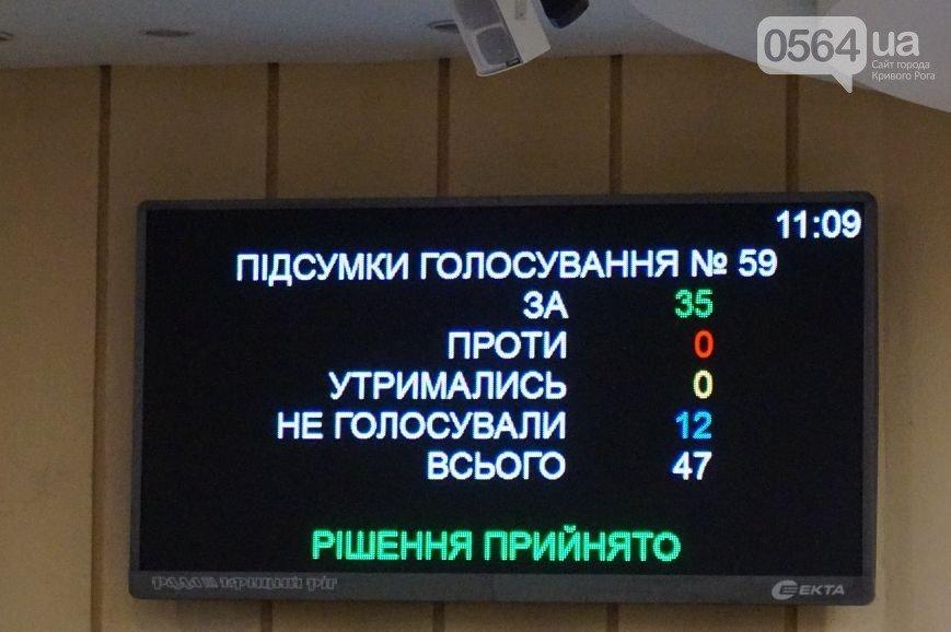 В Кривом Роге: депутаты приняли бюджет-2016 и обратились к Президенту, а Юрий Вилкул озвучил свою зарплату и премии семи заместителей (фото) - фото 3