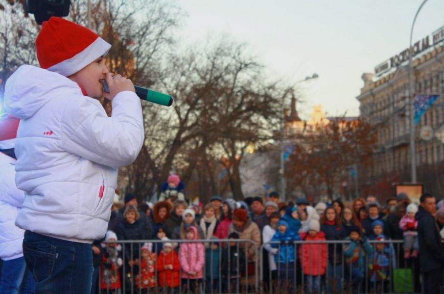 В Ростове-на-Дону официально открыли главную елку города, фото-7