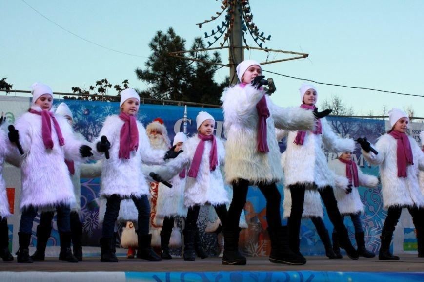 В Ростове-на-Дону официально открыли главную елку города, фото-5