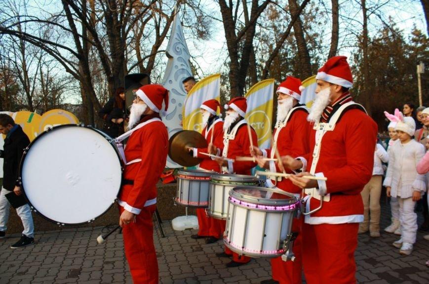 В Ростове-на-Дону официально открыли главную елку города, фото-1