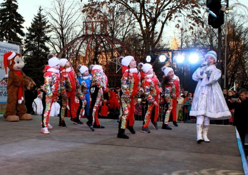 В Ростове-на-Дону официально открыли главную елку города, фото-6