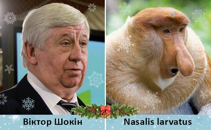 Политический бомонд в Год обезьяны, фото-4