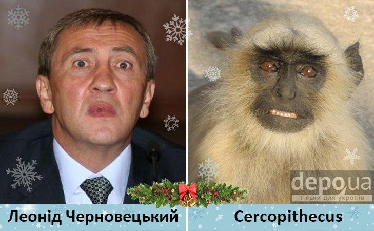 Политический бомонд в Год обезьяны, фото-12