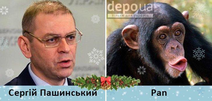 Политический бомонд в Год обезьяны, фото-6