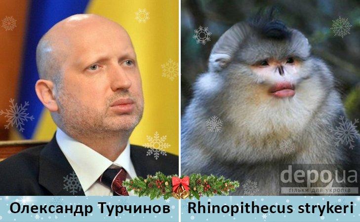 Политический бомонд в Год обезьяны, фото-2