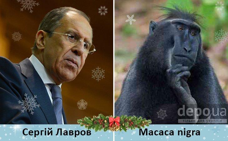 Политический бомонд в Год обезьяны, фото-11