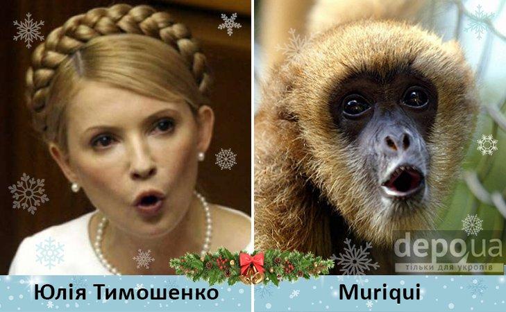 Политический бомонд в Год обезьяны, фото-3