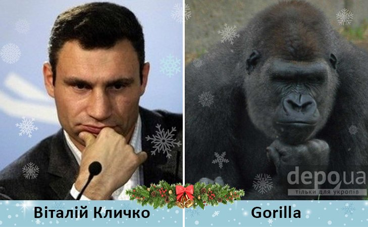 Политический бомонд в Год обезьяны, фото-8