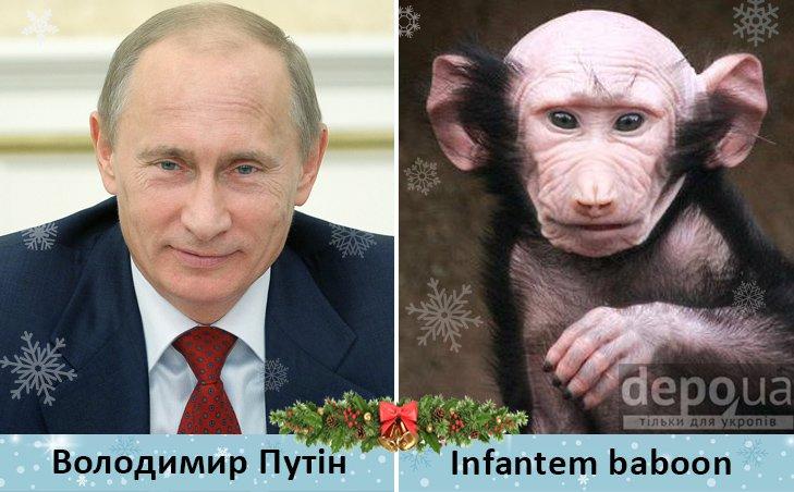 Политический бомонд в Год обезьяны, фото-5