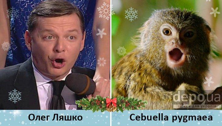 Политический бомонд в Год обезьяны, фото-10