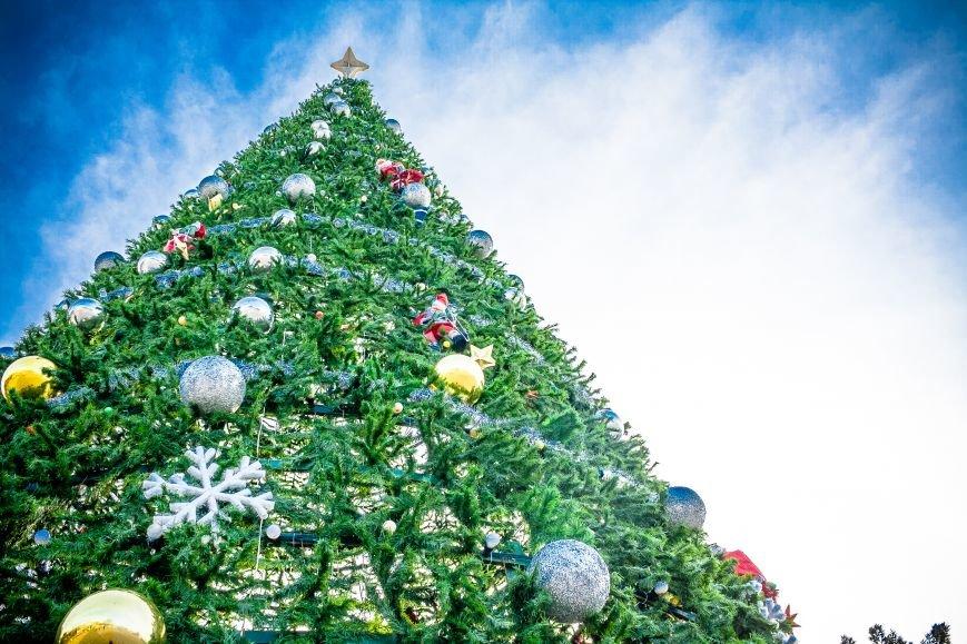 Пять идей, как провести рождественские праздники в Ростове-на-Дону, фото-1