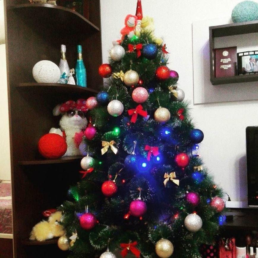 К празднику готовы. 9 новогодних елок полочан и новополочан в Instagram (фото) - фото 8