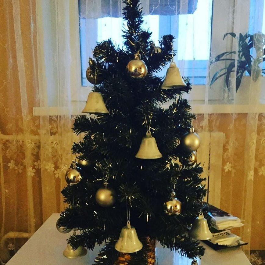 К празднику готовы. 9 новогодних елок полочан и новополочан в Instagram (фото) - фото 2