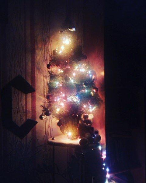 К празднику готовы. 10 новогодних елок полочан и новополочан в Instagram (фото) - фото 1