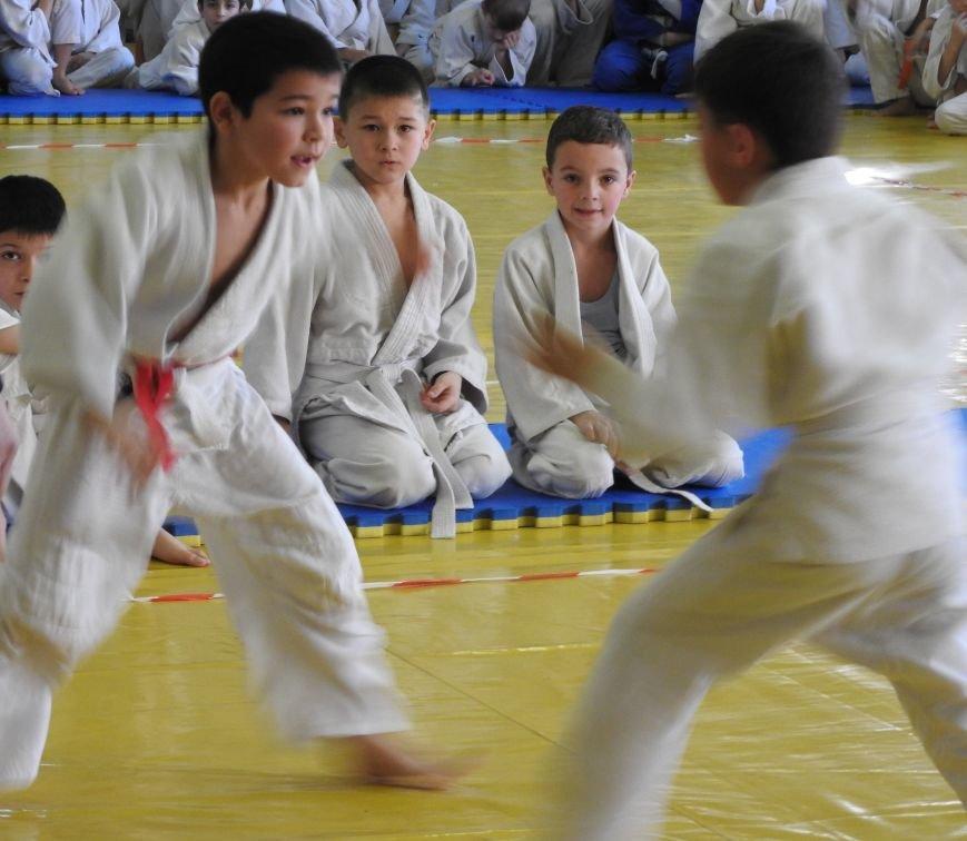 В Симферополе 150 мальчиков и девочек на татами боролись за призы  Рождественского турнира по дзюдо (ФОТО) (фото) - фото 5