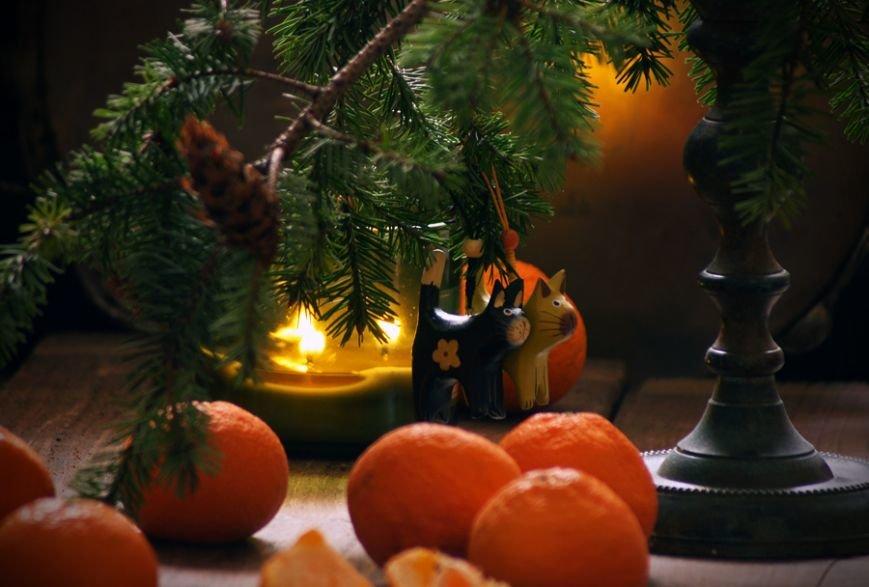 Мандарины, елка и очереди в магазинах: Без чего новополочане не представляют Новый год? (фото) - фото 1
