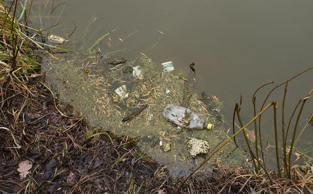 В Киеве река Коник терпит экологическое бедствие (ФОТ (фото) - фото 1