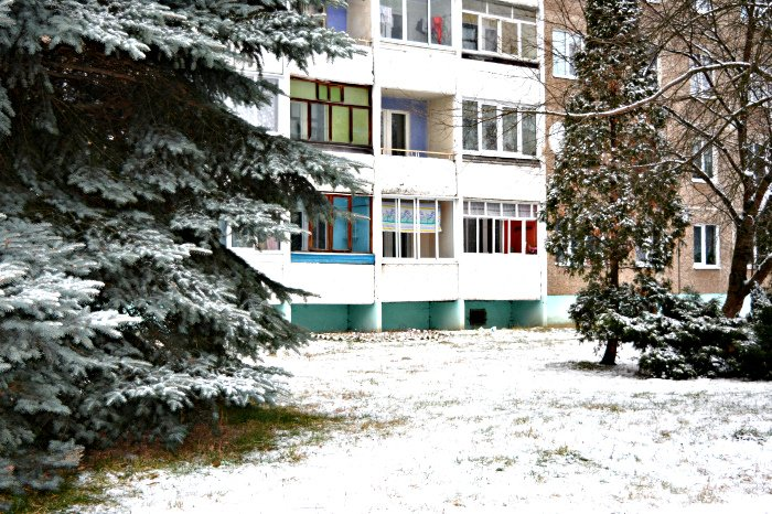 Какой он – предновогодний Новополоцк? (фото) - фото 1