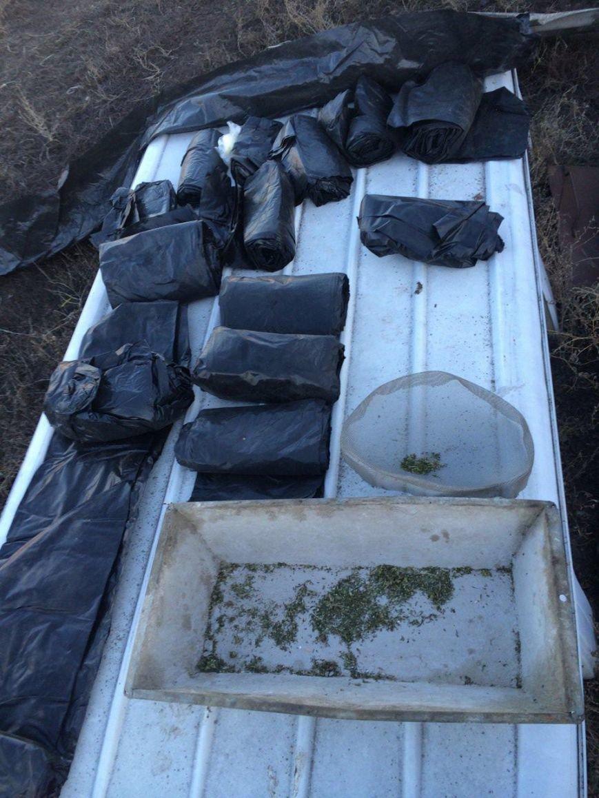 На Днепропетровщине изъяли рекордную партию наркотиков (ФОТО) (фото) - фото 3