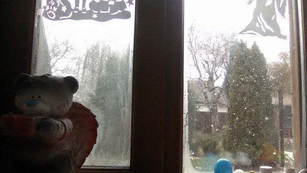 Кривой Рог накрыло снежной бурей (ФОТО) (фото) - фото 7