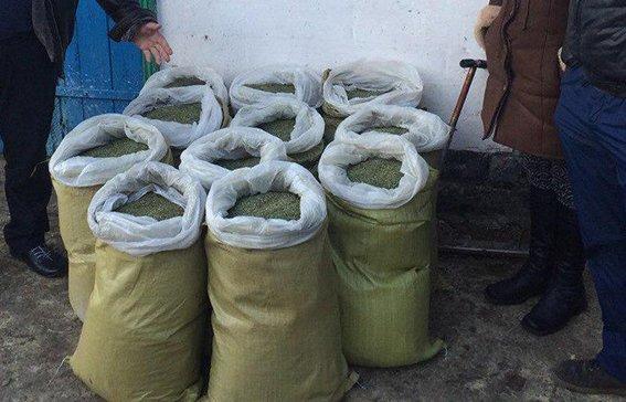 В Криничанском районе изъяли свыше 150 кг марихуаны (фото) - фото 1