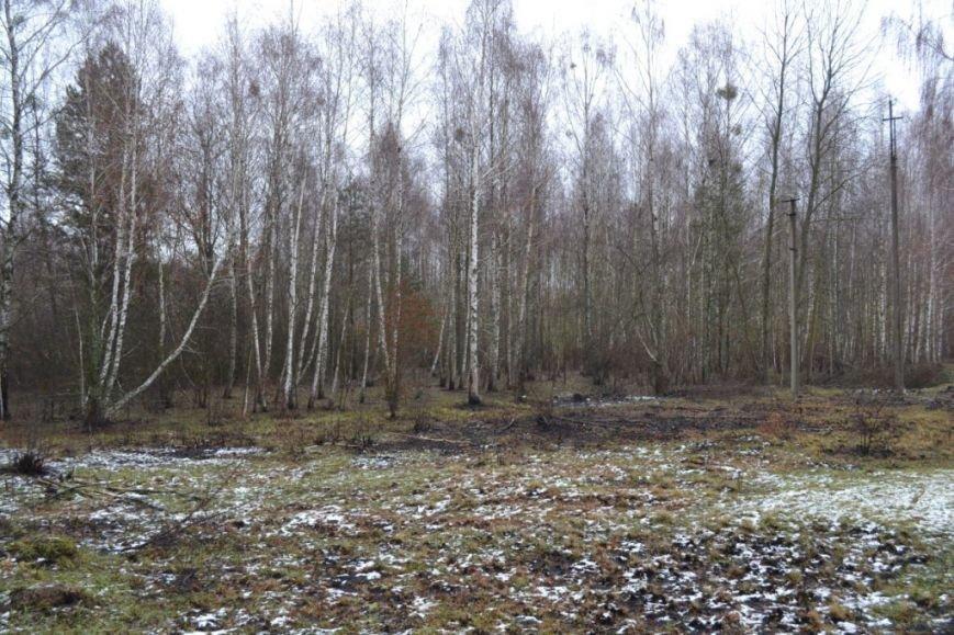 Как вымирает Черниговщина (фоторепортаж) (фото) - фото 11