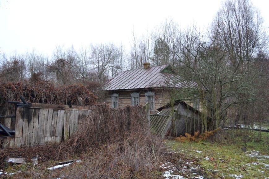 Как вымирает Черниговщина (фоторепортаж) (фото) - фото 5